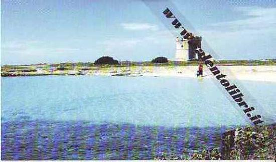 Immagine di CARTOLINA 10 X 17 TORRE SCHILLACE - NARDO`
