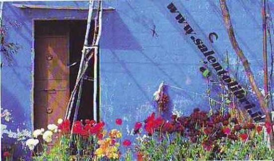 Immagine di CARTOLINA 10 X 17 SALVE - AGRO DI SALVE