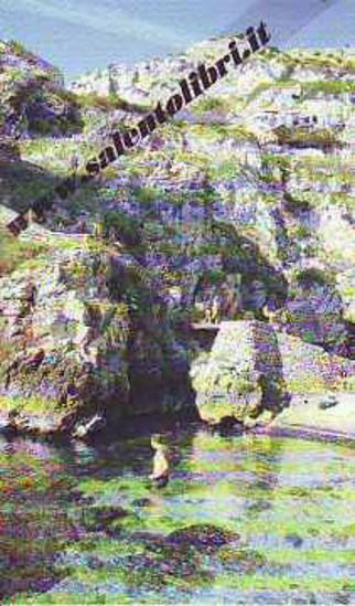 Immagine di CARTOLINA 10 X 17 GAGLIANO DEL CAPO - CIOLO