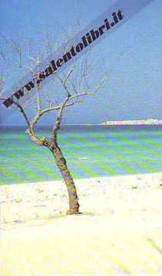 Immagine di CARTOLINA 10 X 17 GALLIPOLI - BAIA VERDE