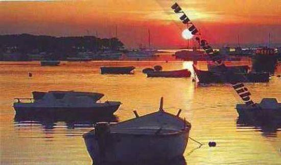 Immagine di CARTOLINA 10 X 17 PORTO CESAREO