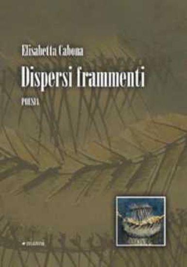 Immagine di Dispersi frammenti