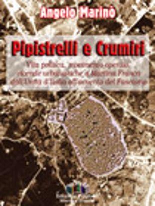 Immagine di Pipistrelli e Crumiri. Vita politica, movimento operaio, vicende urbanistiche a Martina Franca dall'
