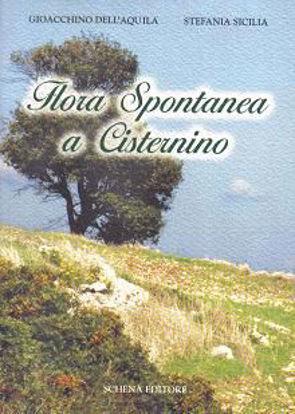 Immagine di Flora spontanea a Cisternino
