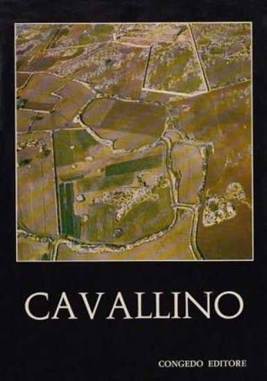 Immagine di CAVALLINO  SCAVI E RICERCHE 1964 1967
