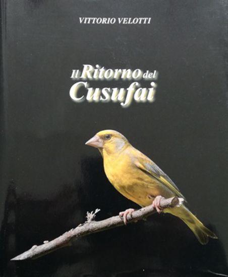 Immagine di IL RITORNO DEL CUSUFAI