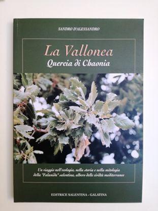 Immagine di LA VALLONEA. QUERCIA DI CHAONIA