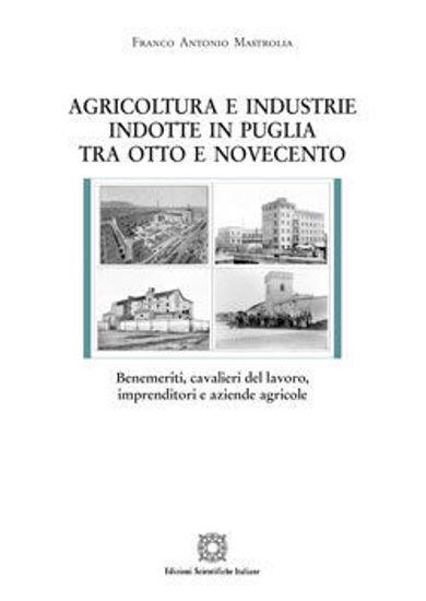 Immagine di AGRICOLTURA E INDUSTRIE INDOTTE IN PUGLIA TRA OTTOCENTO E NOVECENTO