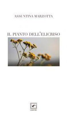 Immagine di IL PIANTO DELL`ELICRISO